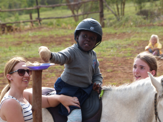 Horse therapy 246
